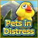 Pets in Distress