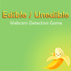 Edible or Unedible – Webcam Game